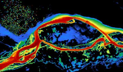 Carte de concentration en matières en suspensions obtenues par imagerie Sentinel-2 à la confluence des fleuves Amazone et Negro (Brésil)