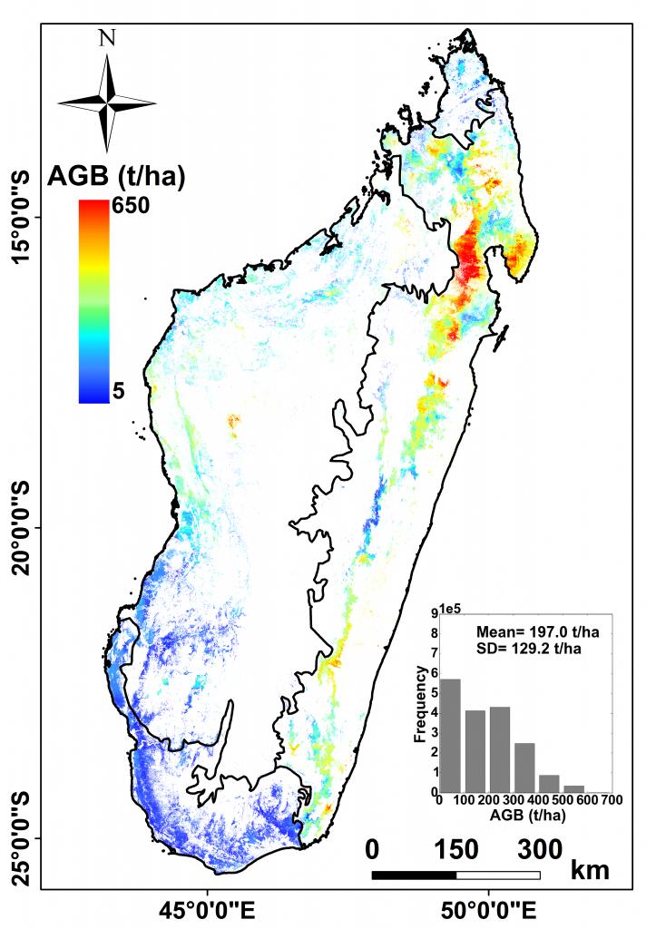 Carte biomasse Madagascar