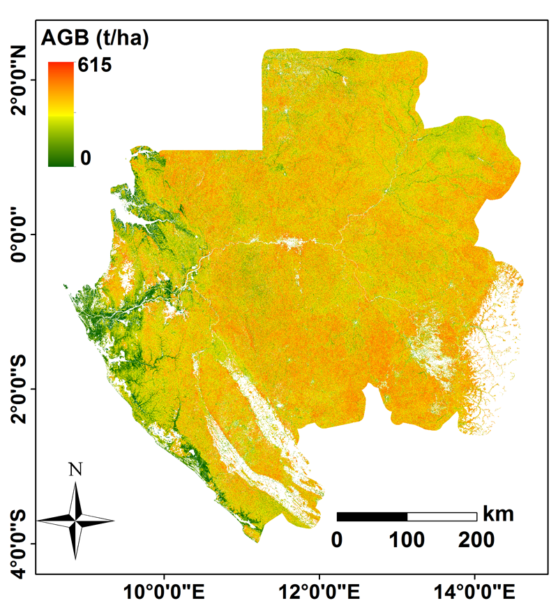 Gabon biomass map