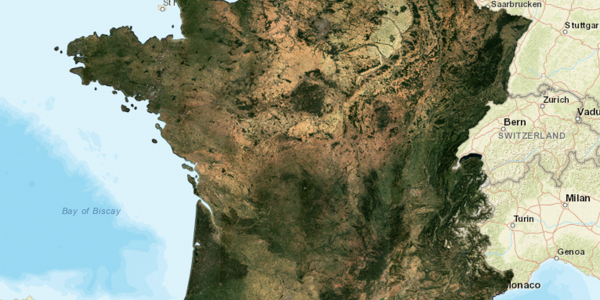 Monthly Surface Reflectance Synthesis for France (August 2019)