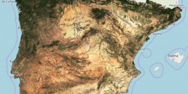 Level-3A reflectance synthesis for the Iberian peninsula (August 2019)