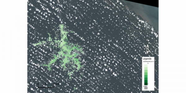 Absorption liée aux matières organiques dissoutes colorées sur la retenue de Petit-Saut